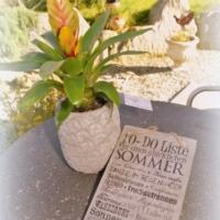 Betonschild_Sommer_Ananas