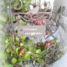 Little_Gardening_Betontopf