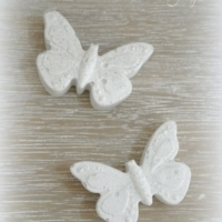 Schmetterling_weiss_beton