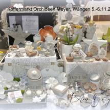 Koffermakrt Orchideen Meyer Wangen