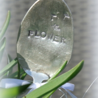 Silberlöffel Flower