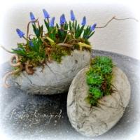 Ei aus Beton bepflanzt Frühling