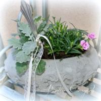 Betonschüssel bepflanzt mit Silbergabel Beton-Garage.ch