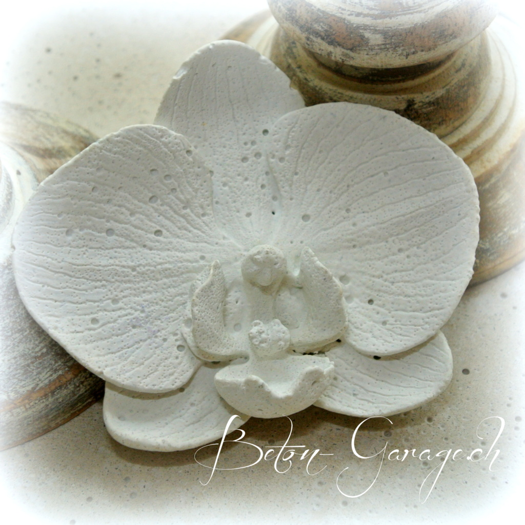 orchideenbl te aus weissem beton geschenke betonkurse giessformen. Black Bedroom Furniture Sets. Home Design Ideas